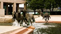 Farmers Branch Hotels