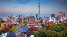 Find cheap flights from Johannesburg to Tokyo