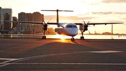 Find cheap flights on Porter Airlines