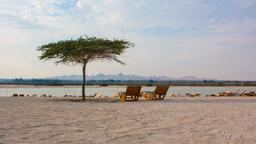 Sir Bani Yas hotels