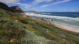 Find cheap flights from Alexandria to Cape Town