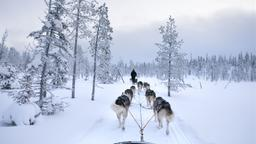 Kuusamo car hire