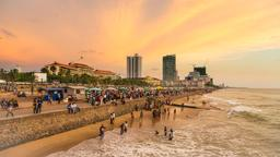 Find cheap flights from Port Elizabeth to Colombo Bandaranaike Intl